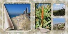 מערב חיפה  והחוף