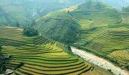 וייטנאם - Vietnam