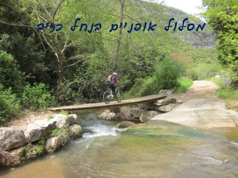 אופניים בנחל כזיב