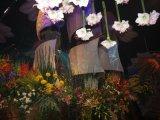 תערוכת הפרחים בחיפה  2012