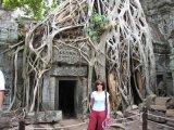 מקדשי אנקור קמבודיה