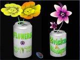 Flower / פרחים