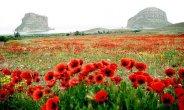 הטבע של איראן