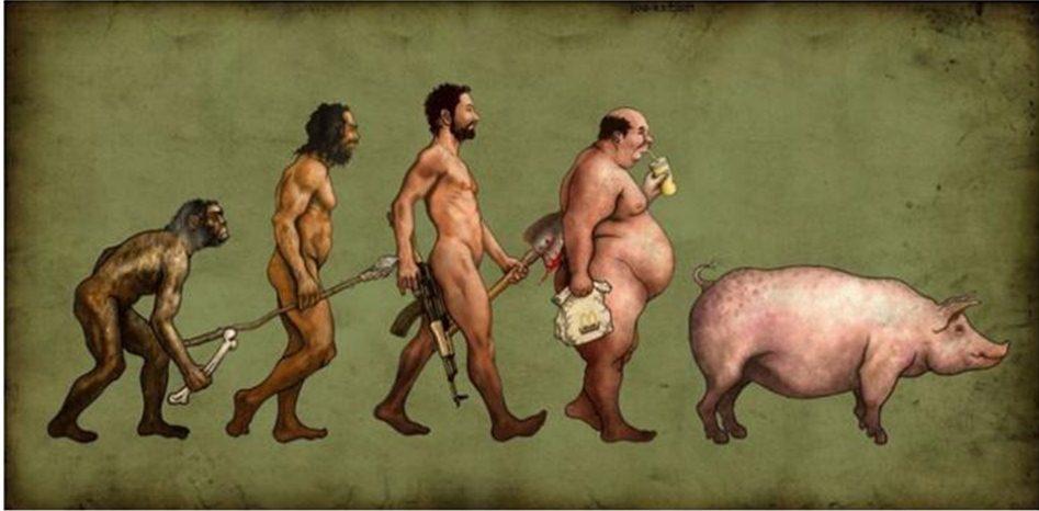 Image result for ,תמונות של אבולוציה
