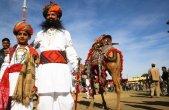 פסטיבל הגמלים בהודו