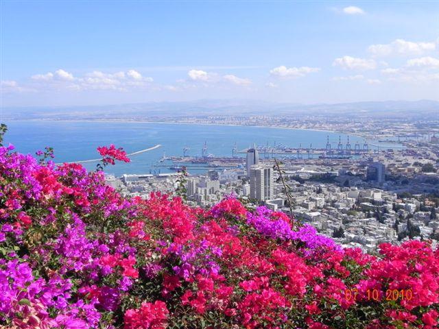 זה אצלנו - חיפה