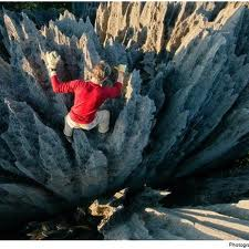 יער אבנים במדגסקר