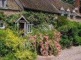 Cothay Manor garden
