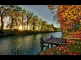 צבעי הסתיו