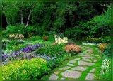גן בוטני בקרייסטצ`רץ`, ניו זילנד