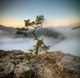 תמונות טבע מהעולם