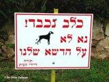 שלטים מוזרים ומצחיקים בעברית!