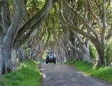 דרך יפהפייה ויוצאת דופן באירלנד