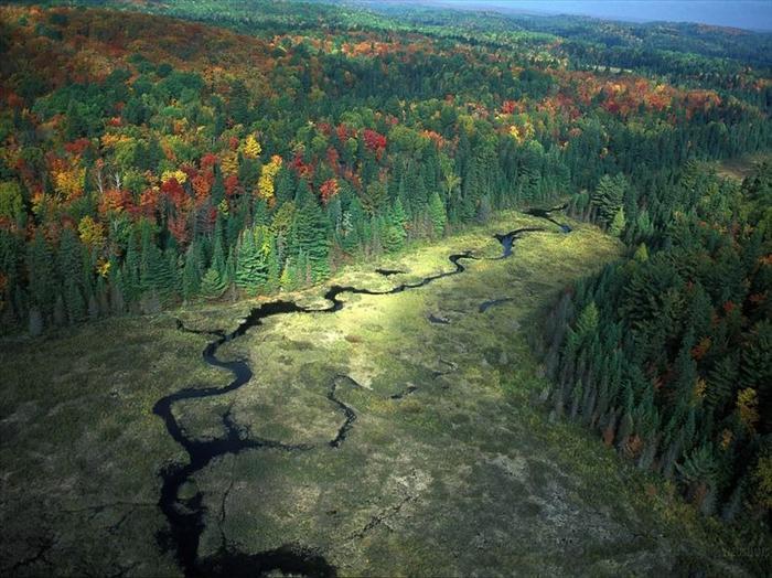 סתיו עוצר נשימה בפארק אלגונקווין בקנדה