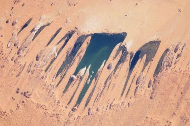אגמי אוניאגנה - נווה המדבר של צ`אד