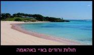 חופים צבעוניים