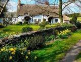תמונות מקסימות אנגליה