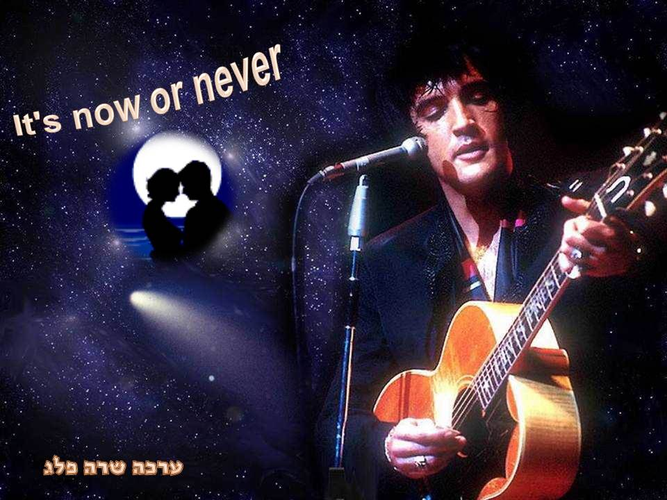 שרה פלג -   It`s now or never