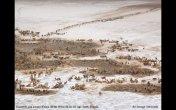 תמונות טבע מהממות של הנשיונל גאוגרפיק