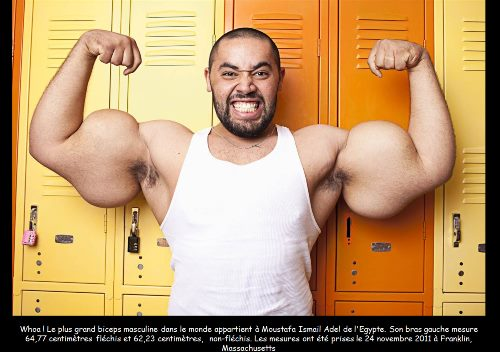 האיש השרירי ביותר בעולם