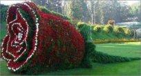 גן בוטאני יפה