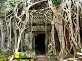 קמבודיה 5