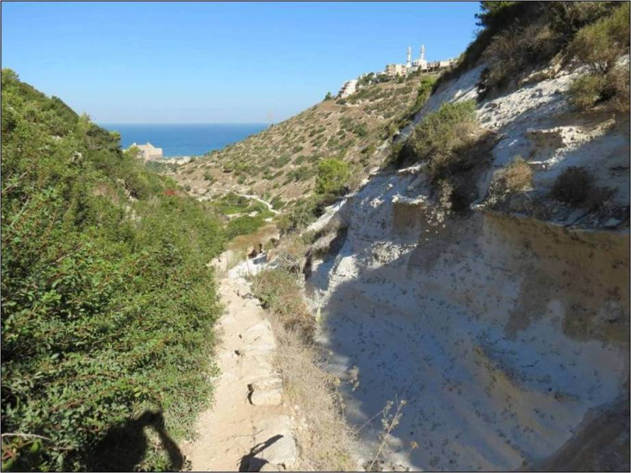 חיפה - טיול בנחל שיח ונחל אזוב