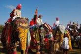 פסטיבל פילים בהודו