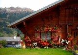 Grimentz, Switzerland - flower village