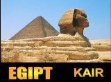 תמונות מקהיר