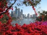בריסביין - השער לצפון הטרופי של אוסטרליה