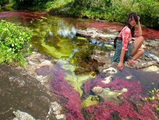 Cano Cristales – the world`s most colourful river