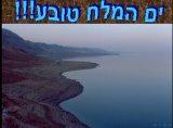 ים המלח טובע