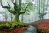 Gorbea Natural Park, Spain