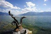 אגם ג'נבה