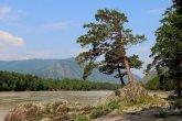 טיול טבע בהרי אלטאי