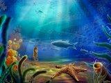 כוכבי-ים