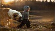 תמונות של ילדים עם חיות