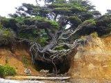 הטבע לא מוותר
