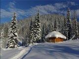 מצגת יפיפיה - שלג