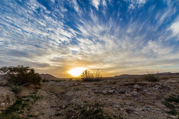 נופי ישראל 2015