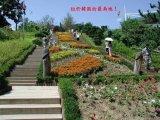 פארק ארוטי בסין