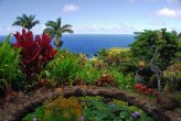 Garden of Eden on the island of Maui