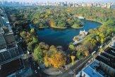 סנטראל פארק בניו יורק