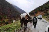 טעימות מטיול ג'יפים באלבניה