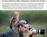 20 סיבות למה צלם טבע זה המקצוע