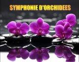 סימפוניה של סחלבים