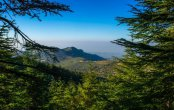 Lebanon - land of cedars