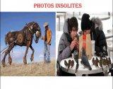 תמונות יוצאות דופן
