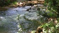 ישראל ושכנותיה – המאבק על המים
